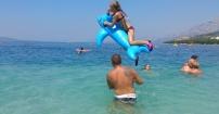 Tegoroczne wysokie loty delfinów