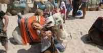 Pocałunek z wielbłądem :)