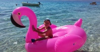Książe na flamingu