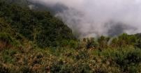 Spacer w chmurach