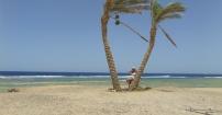 Morze,palmy i ja.