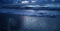 Urok Bałtyku