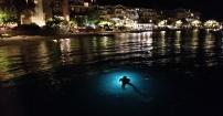 nurkowanie nocą